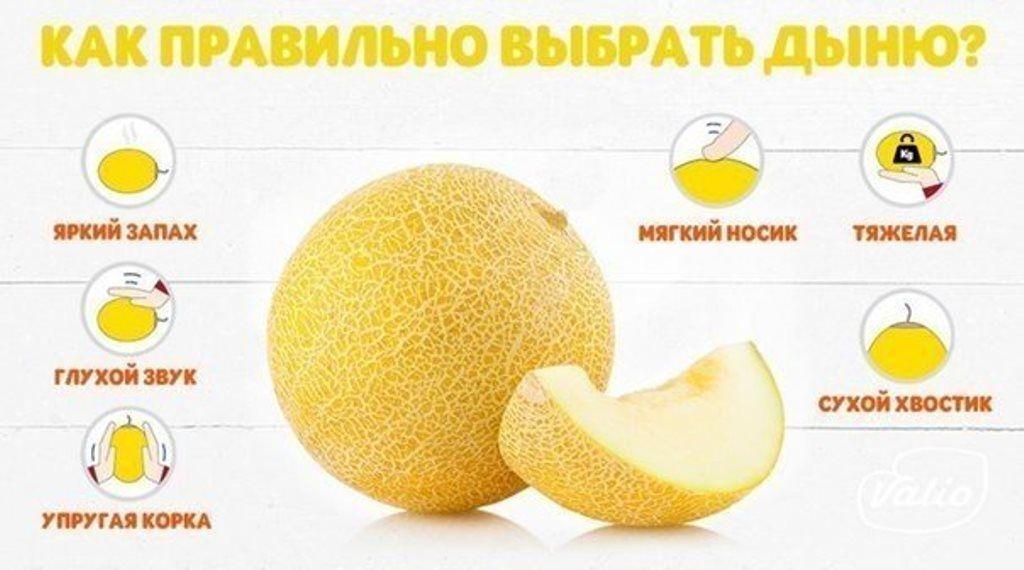 Как выбрать спелый арбуз или сладкую дыню?, портал Мозыря.